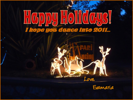 Happy holidays - I hope you dance into 2011! Love, Evamaria